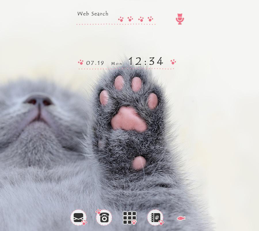 Wallpaper Tema Saludo Gatuno for Android   APK Download 900x800