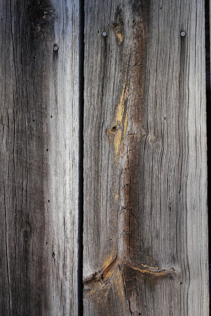 Barn Wood Texture 01 by Thy Darkest Hour 730x1095