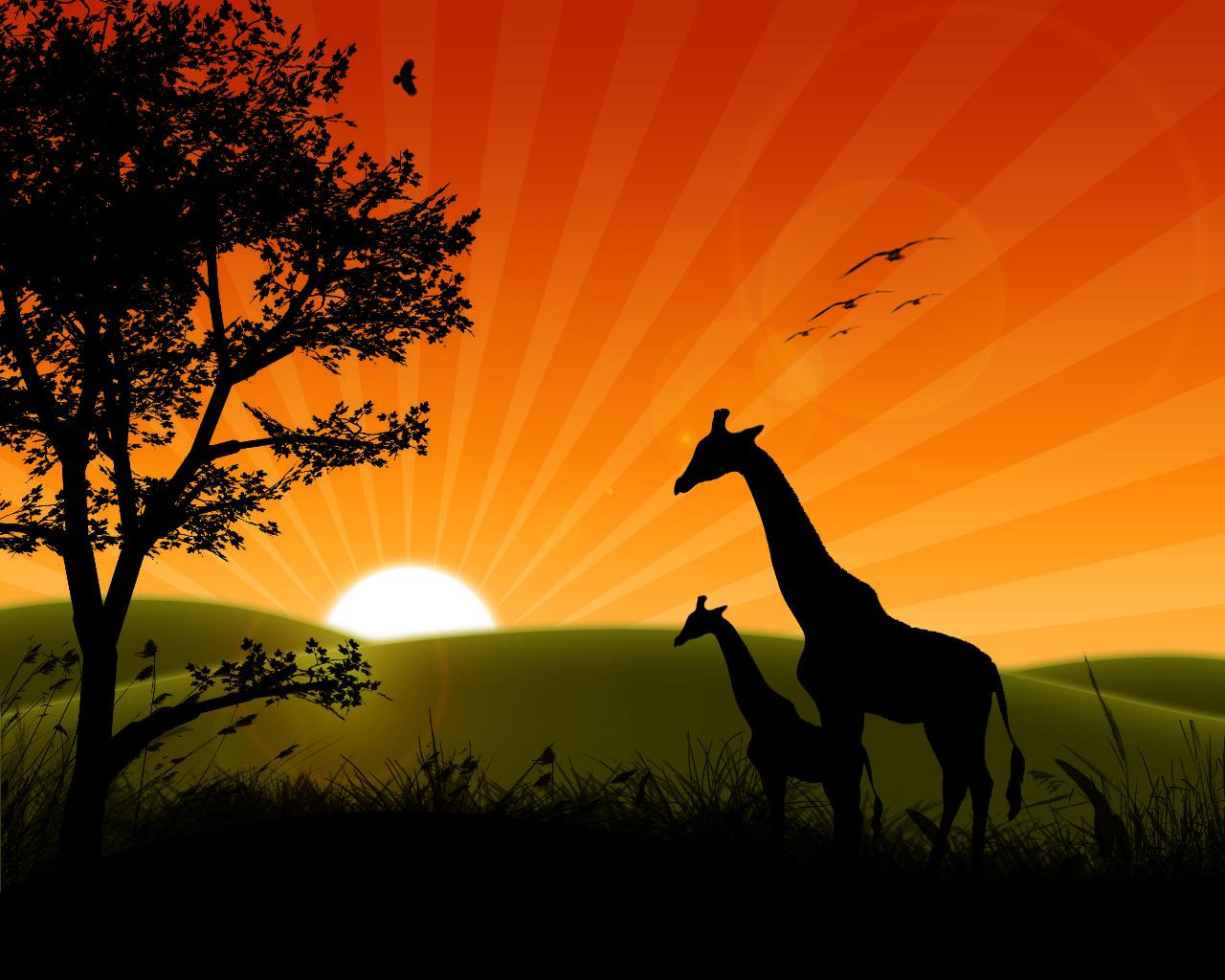 sunrise wallpaper 1280x1024