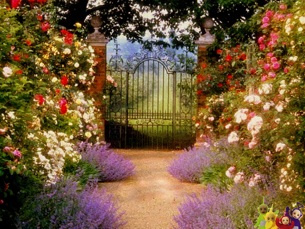 Country Garden Wallpaper Wallpapersafari