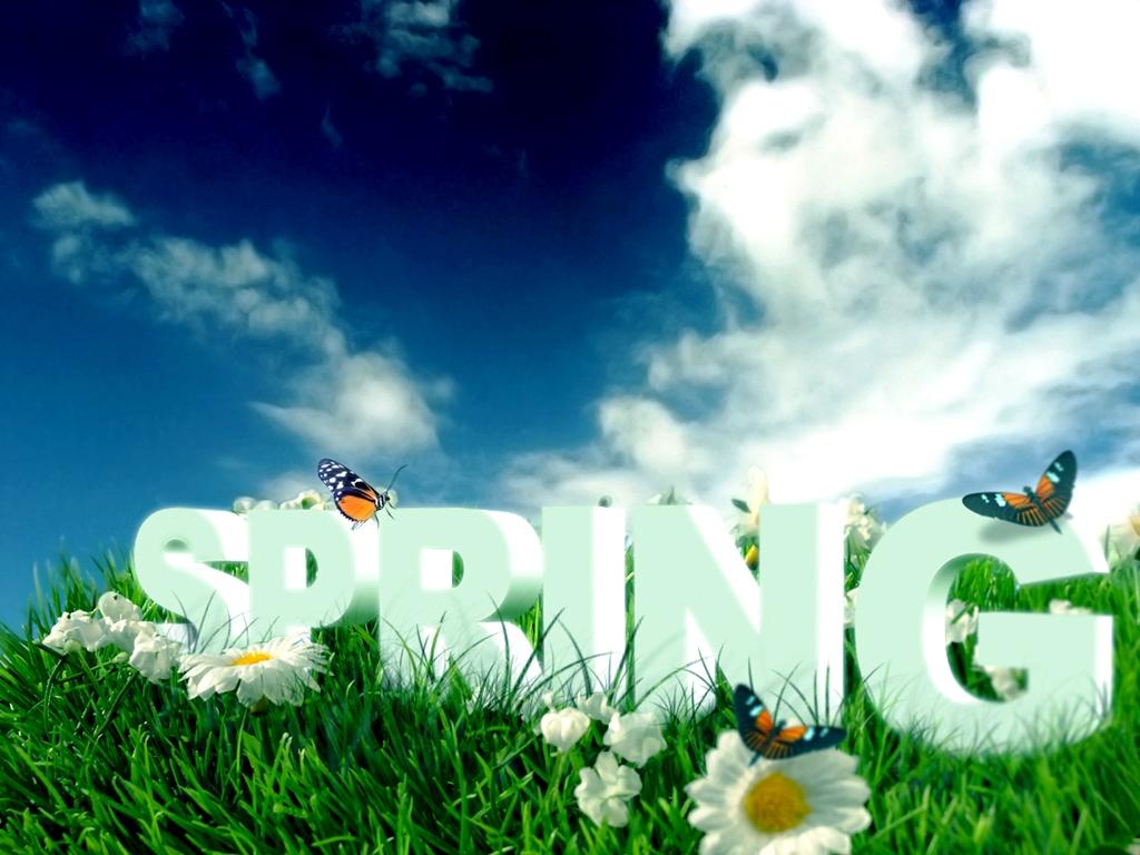 Nature Spring WallpaperComputer Wallpaper 1024x768