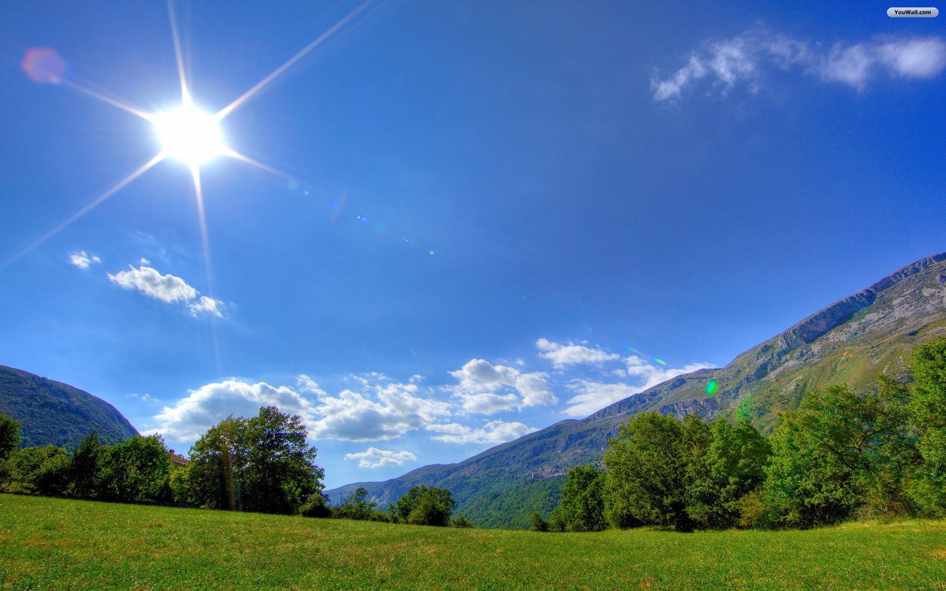 Sunlit meadow wallpaper   806119 1920x1200