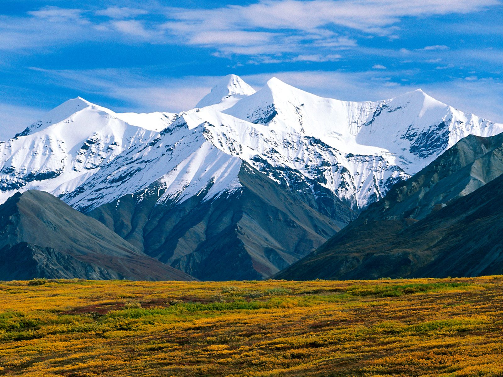 Denali National Park Alaska Wallpapers HD Wallpapers 1600x1200