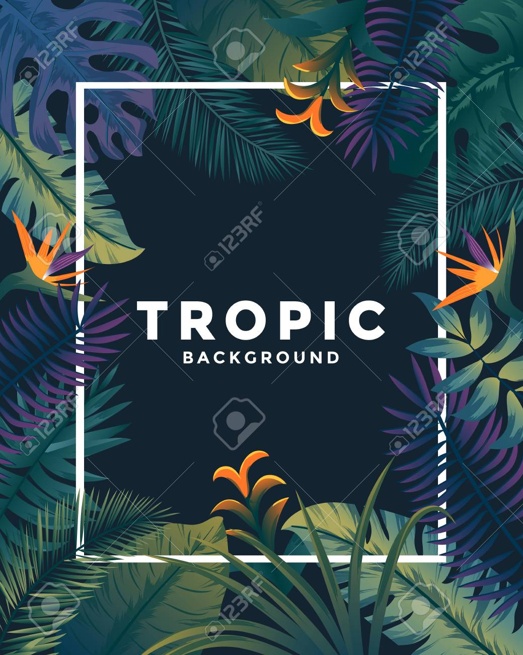 Tropical Background With Jungle Plants Frame With Tropic Leaves 1039x1300