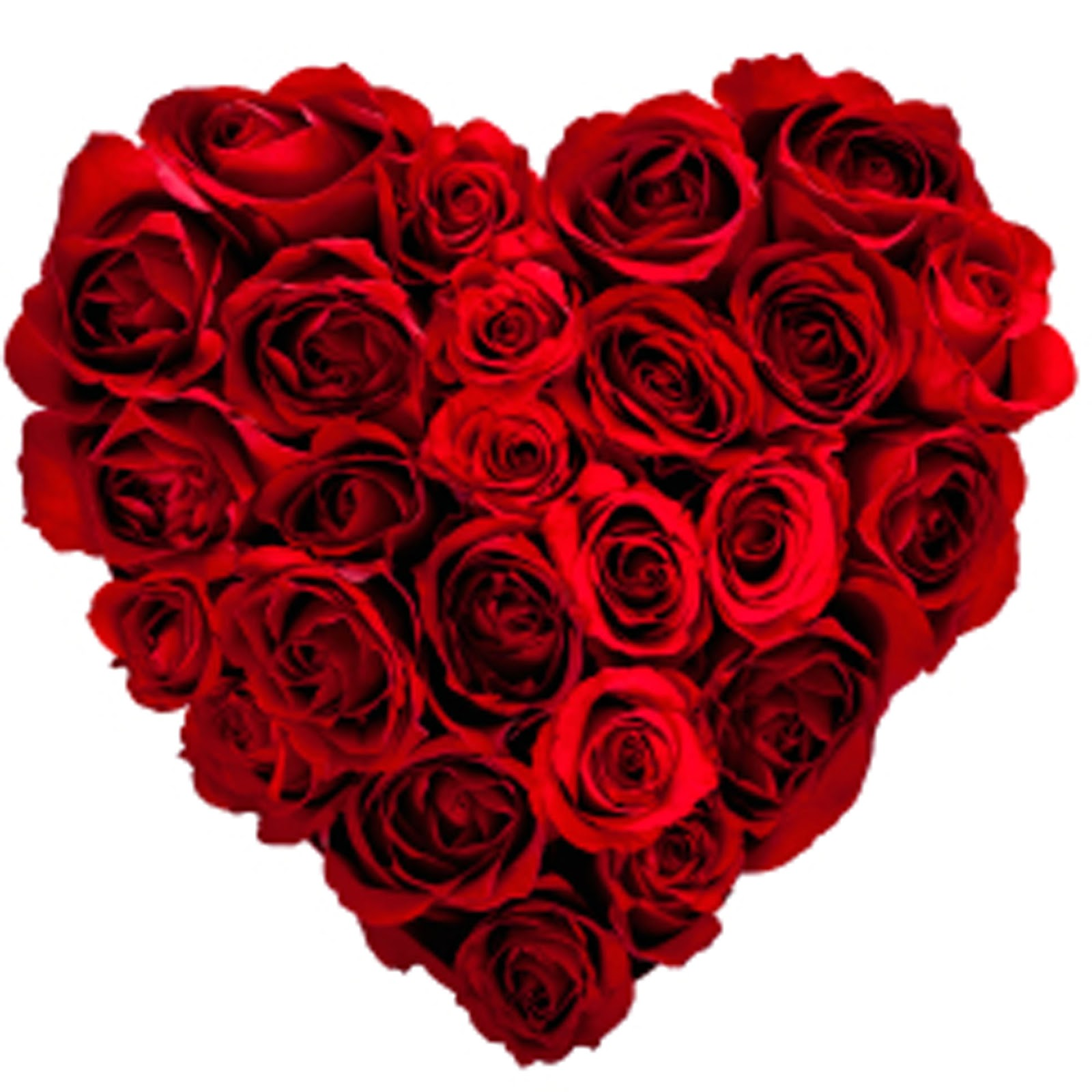 Heart n Love valentines day HD wallpapers 2013   Full HD photo 1600x1600