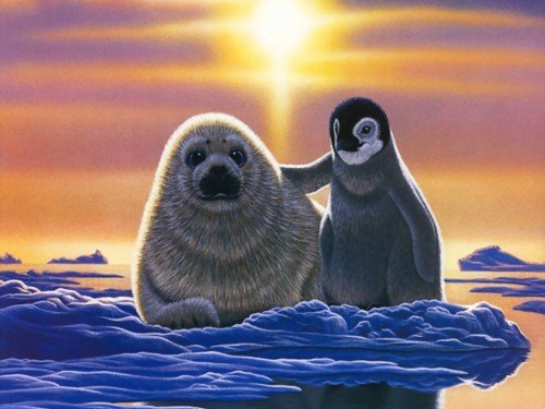William Schimmel Seal and Baby Penguin Screensaver Screensavers 500x375