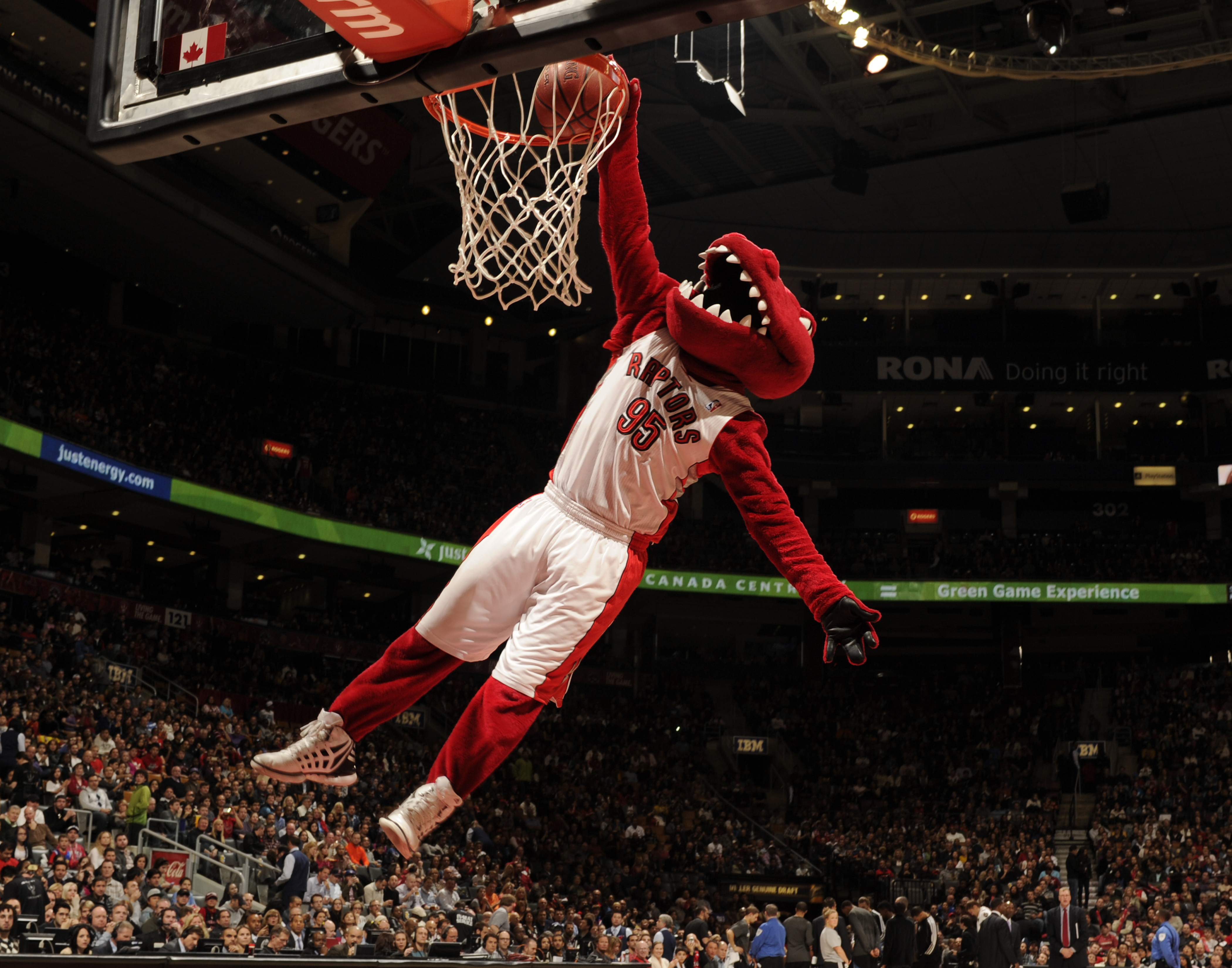 Raptors HD Wallpapers Hd Wallpapers 4200x3300