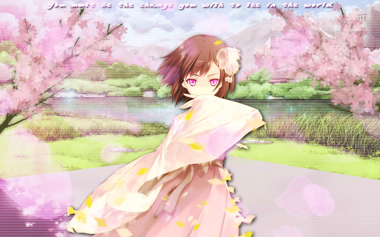 Cherry Blossom Anime Wallpaper by TheOriginalFullMetal 1440x900