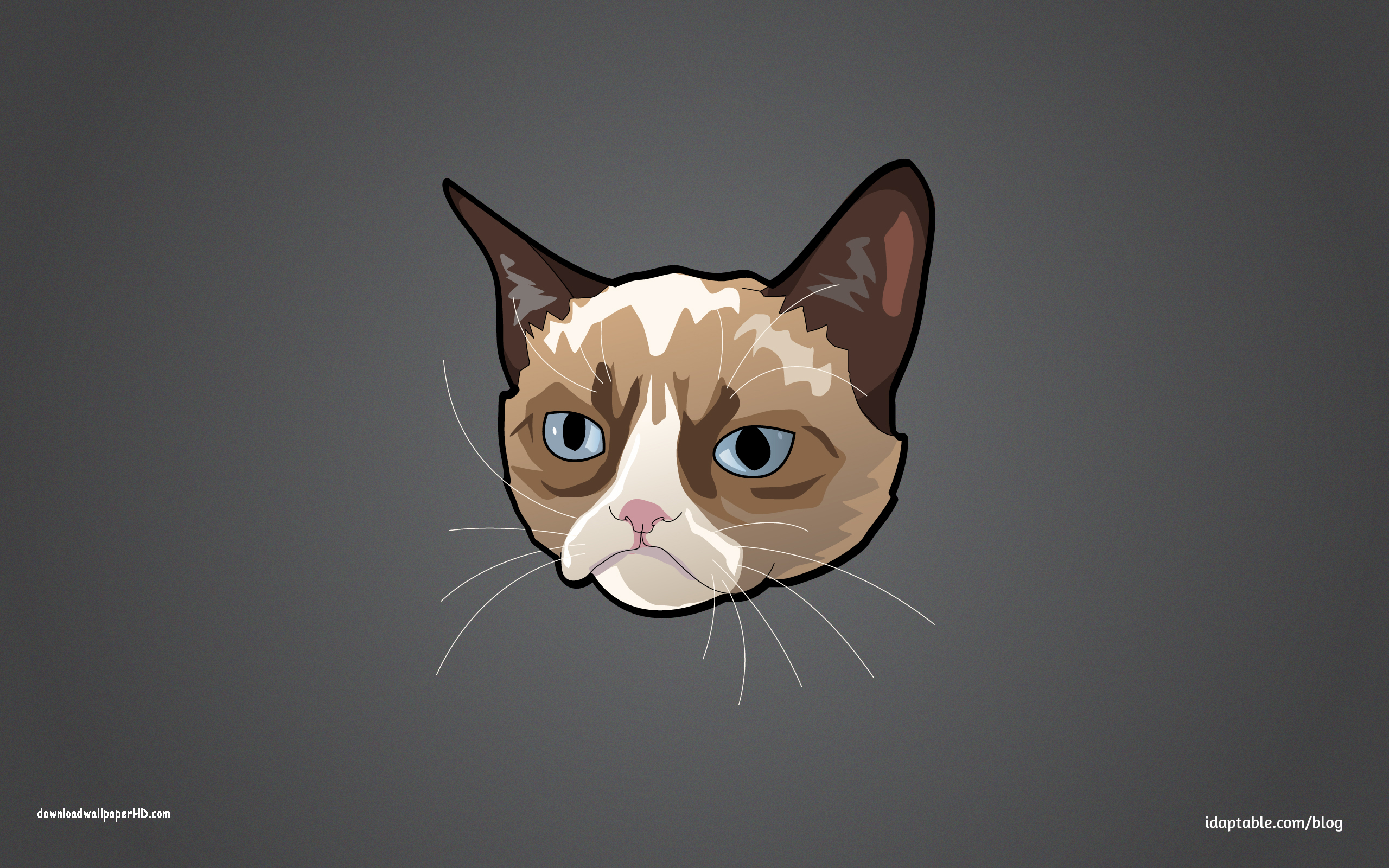 Grumpy cat iphone wallpaper wallpapersafari - Cat wallpaper cartoon ...