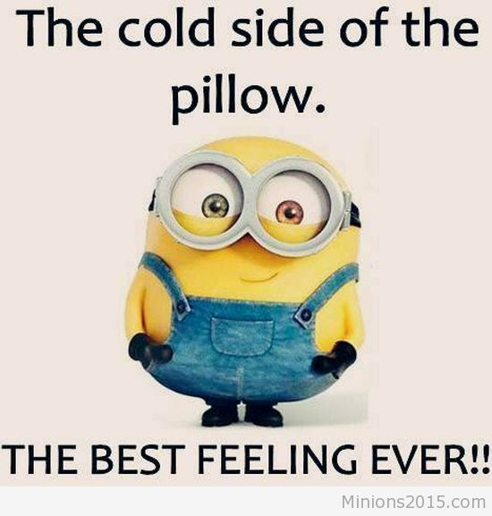 Minions Funny Pictures Images Photos Wallpapers Quotes 550x577
