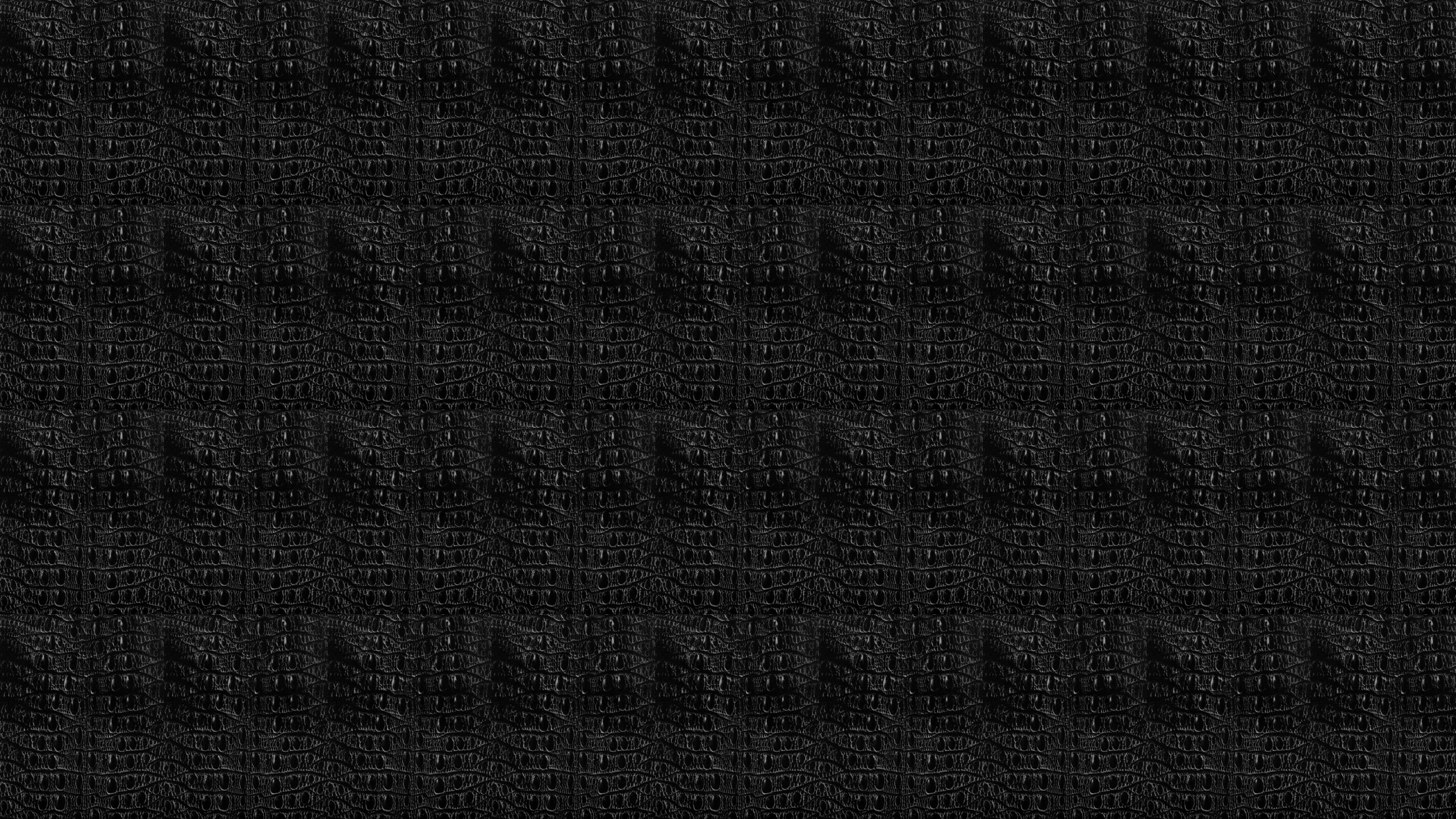 Black Snake Skin Wallpaper 2560x1440