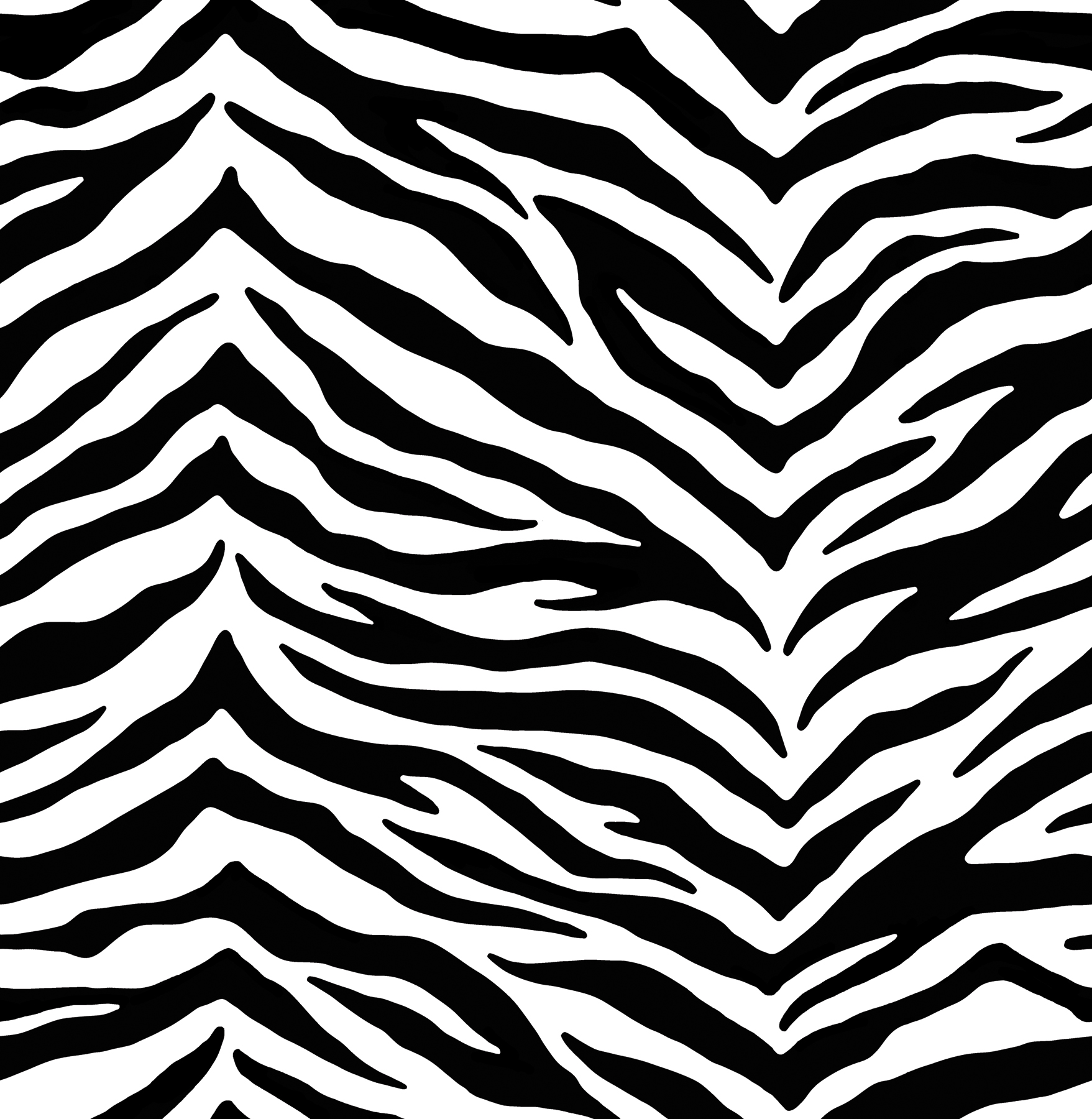 Black White Zebra Wallpaper 1757x1800