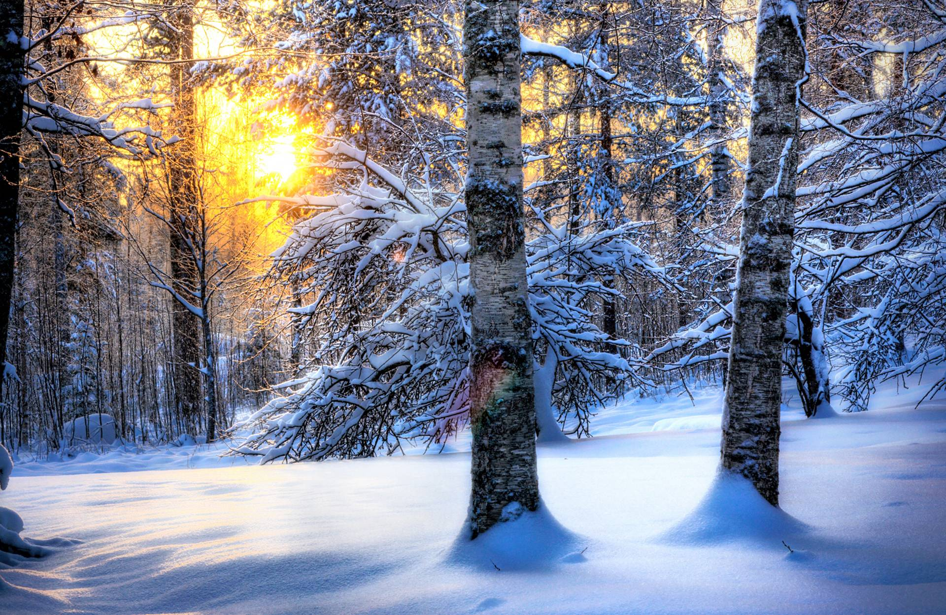 Beautiful Winter Wallpaper HD for desktop 1920x1250