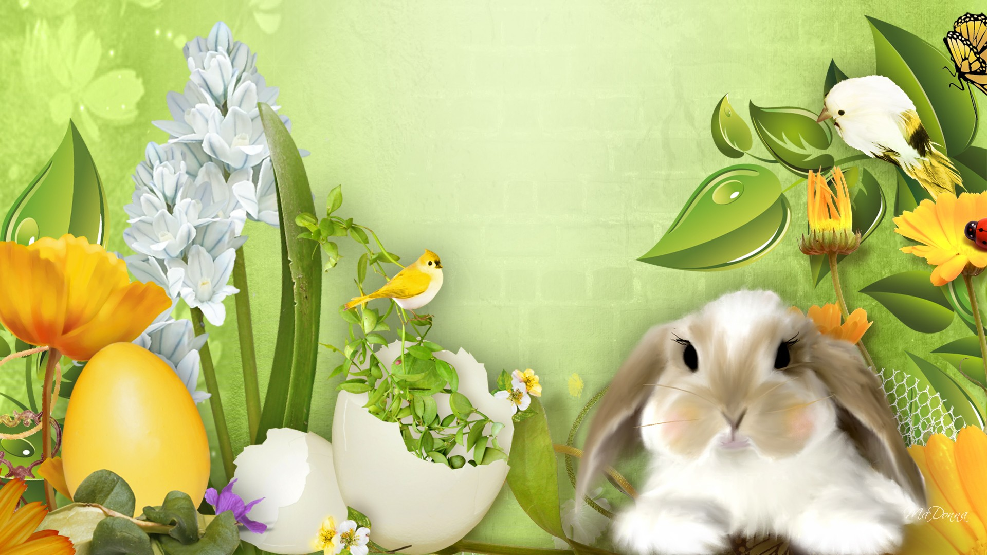 Easter 2014 HD   Wallpaper High Definition High Quality Widescreen 1920x1080