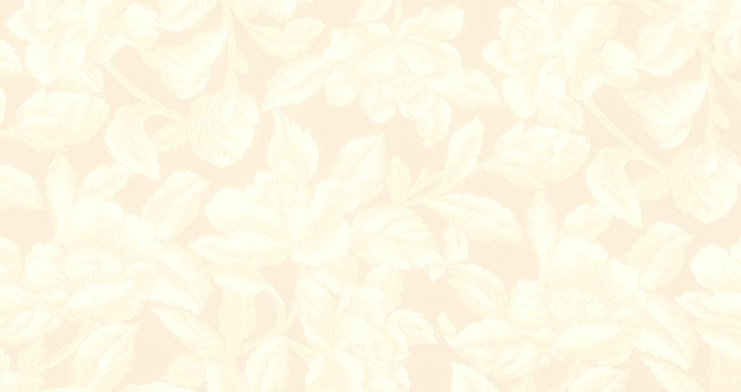 Cream Background Design Graphicdesign 1067x565