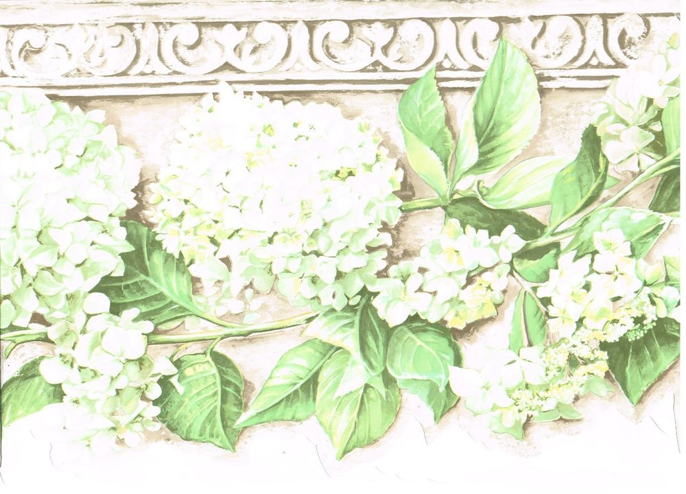 WHITE HYDRANGEA CROWN MOULDING MARBLE Wallpaper bordeR Wall eBay 1000x720