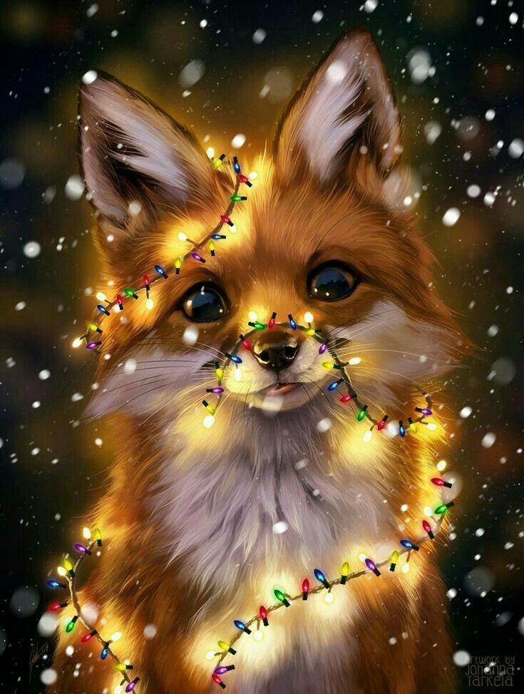 Fox light Cute cartoon animals Cute animal drawings Anime animals 735x974