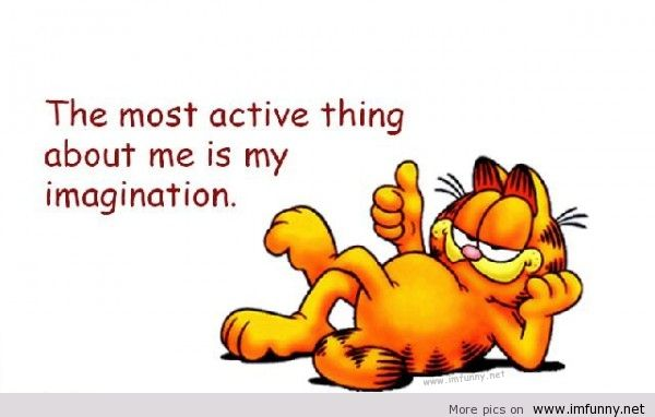 Funny Garfield Quotes QuotesGram 600x382