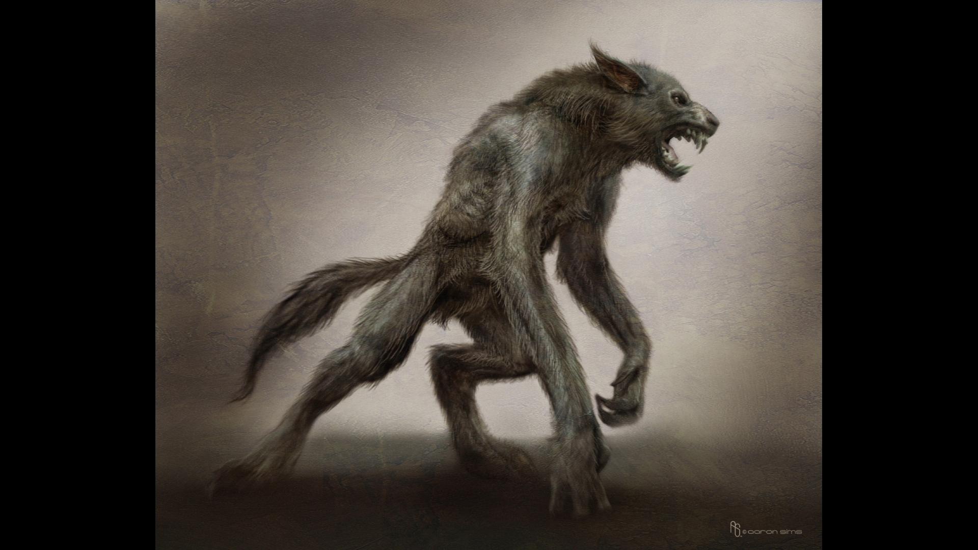 werewolf Wallpaper Background 21749 1920x1080