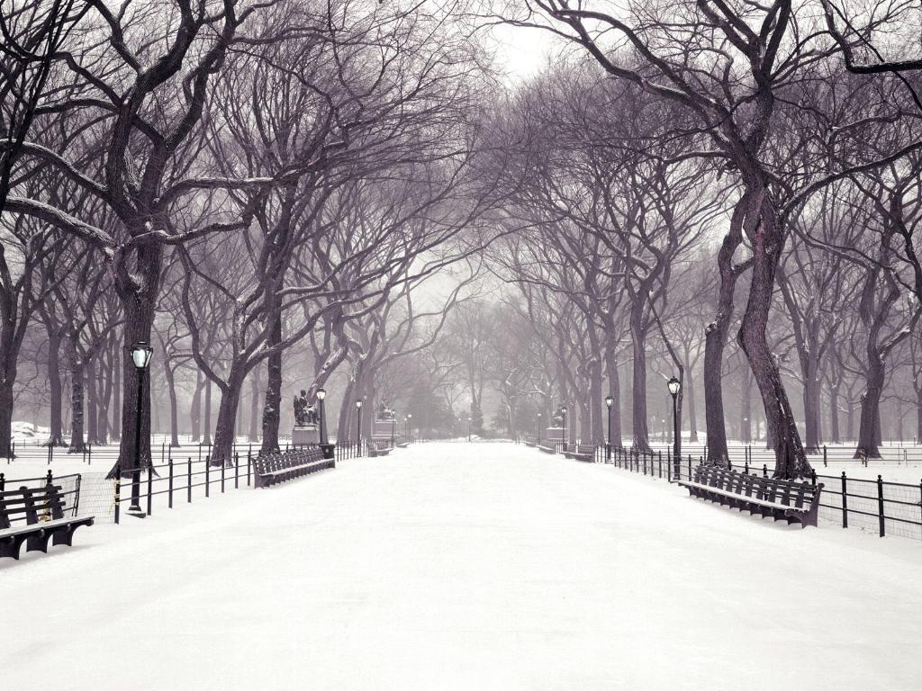 Winter in new york city wallpaper Wallpaper Wide HD 1024x768