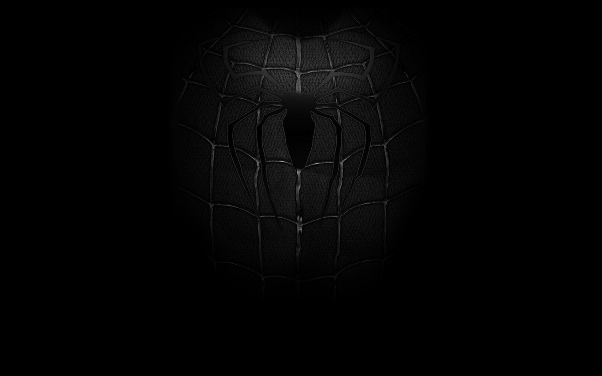 26 Dark Spider Man Wallpapers On Wallpapersafari