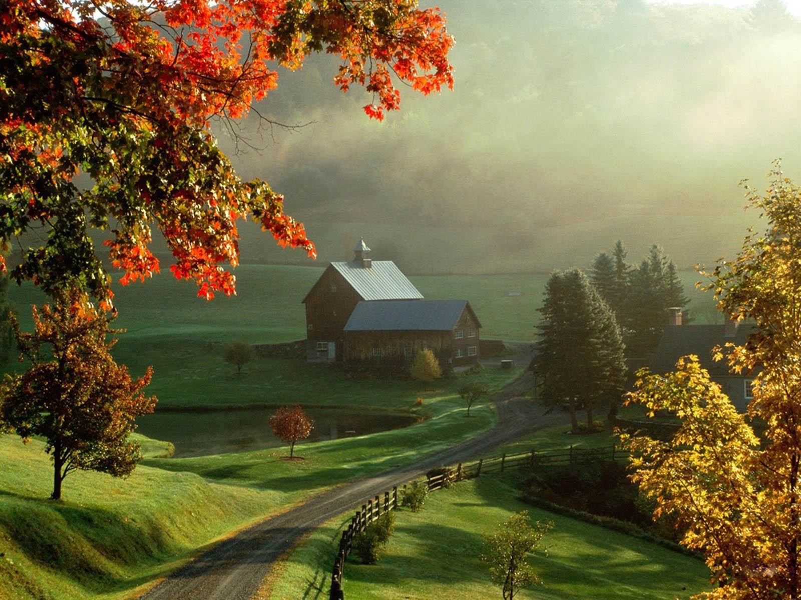 AutumnFall Scenery   Autumn Wallpaper 35580374 1600x1200