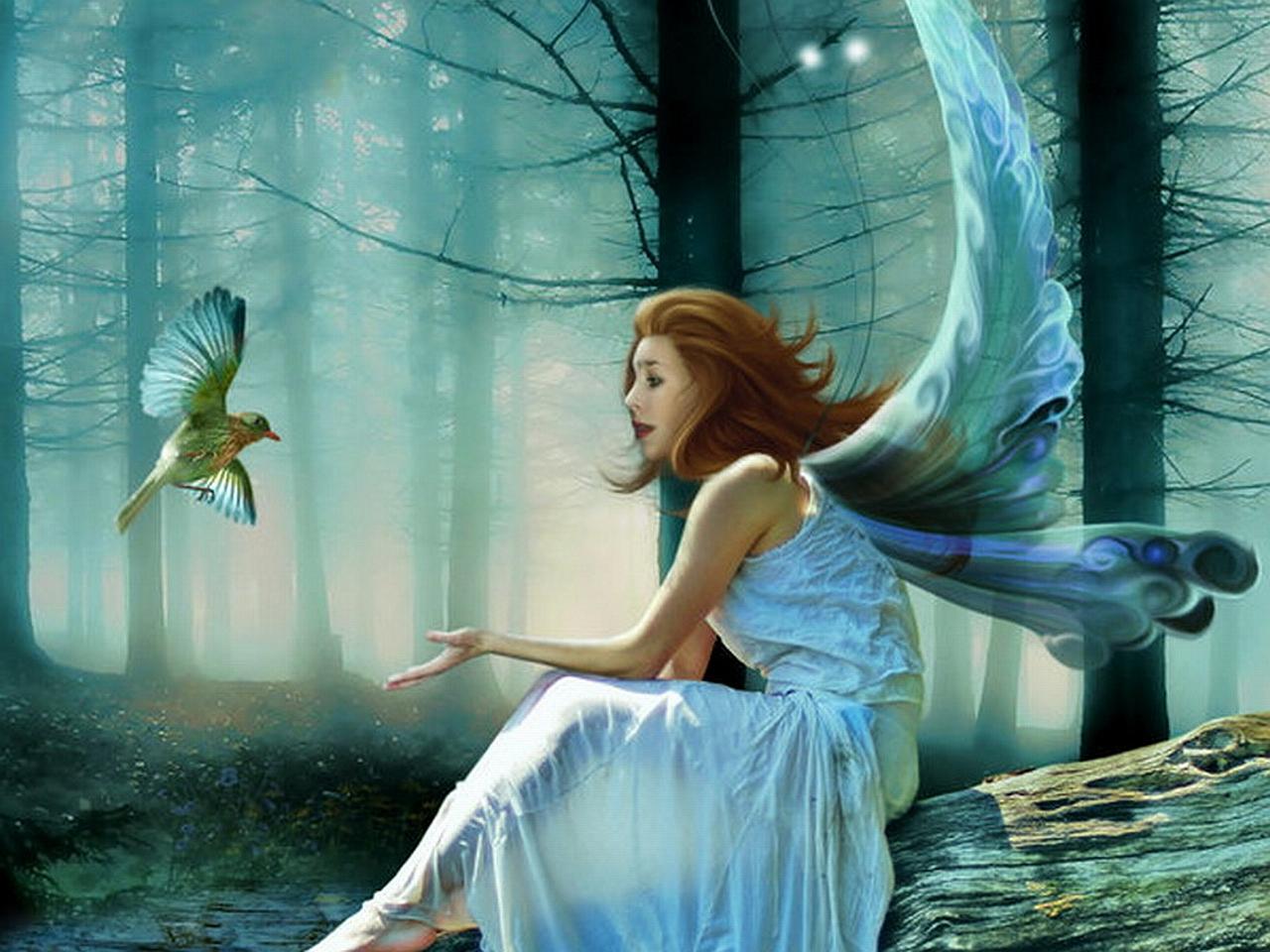 77+ Fantasy Fairies Wallpaper on WallpaperSafari