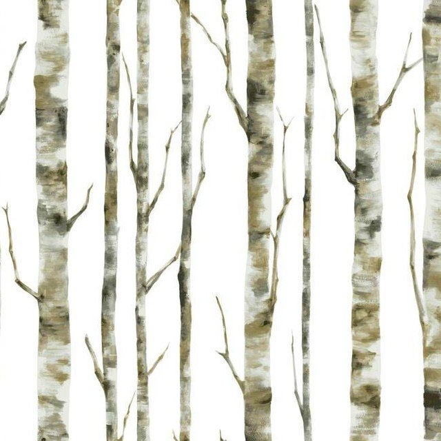Forest Birch Tree Wallpaper Double Roll   Contemporary   Wallpaper 640x640
