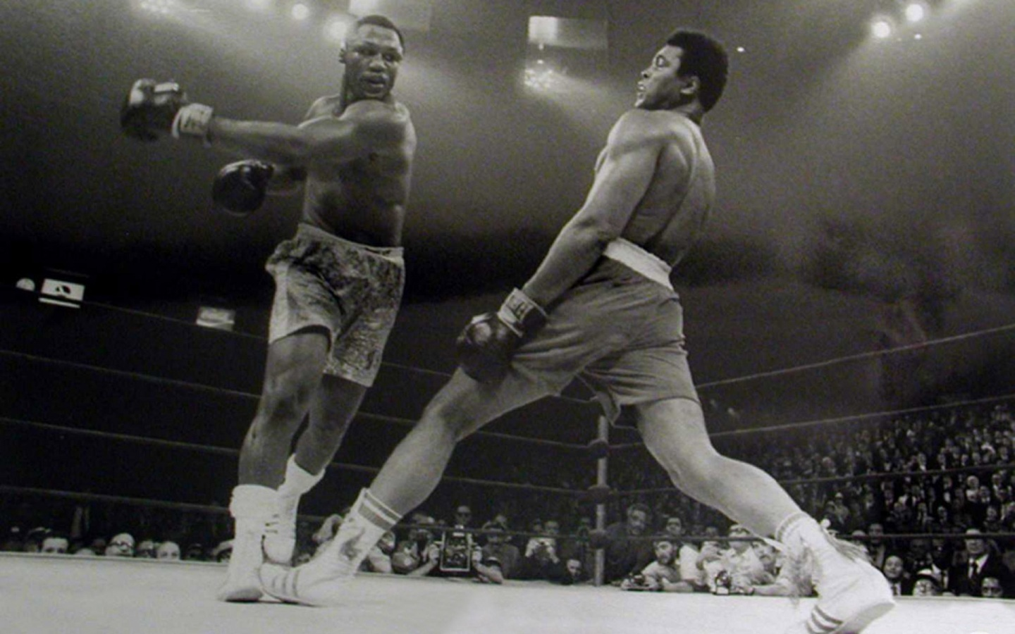 Muhammad Ali Vs Joe Frazier Wallpaper Photo Shared By Thoma7 1440x900