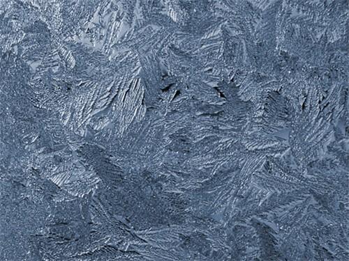 AccuWeathercom Photo Gallery Frozen widow on cold winter night Image 500x375