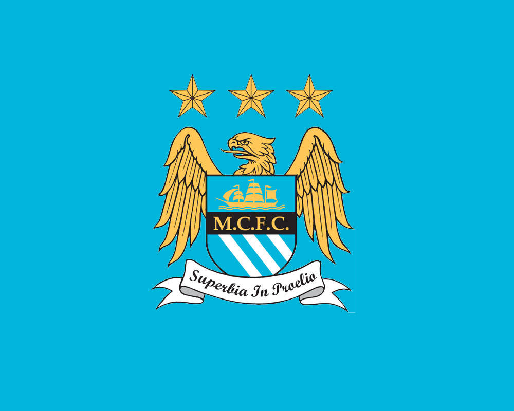 Manchester City Logo Wallpapers HD Collection Download 1000x800