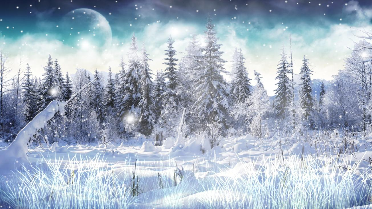 Winter Snow Screensaver full Windows 7 screenshot   Windows 7 Download 1305x733