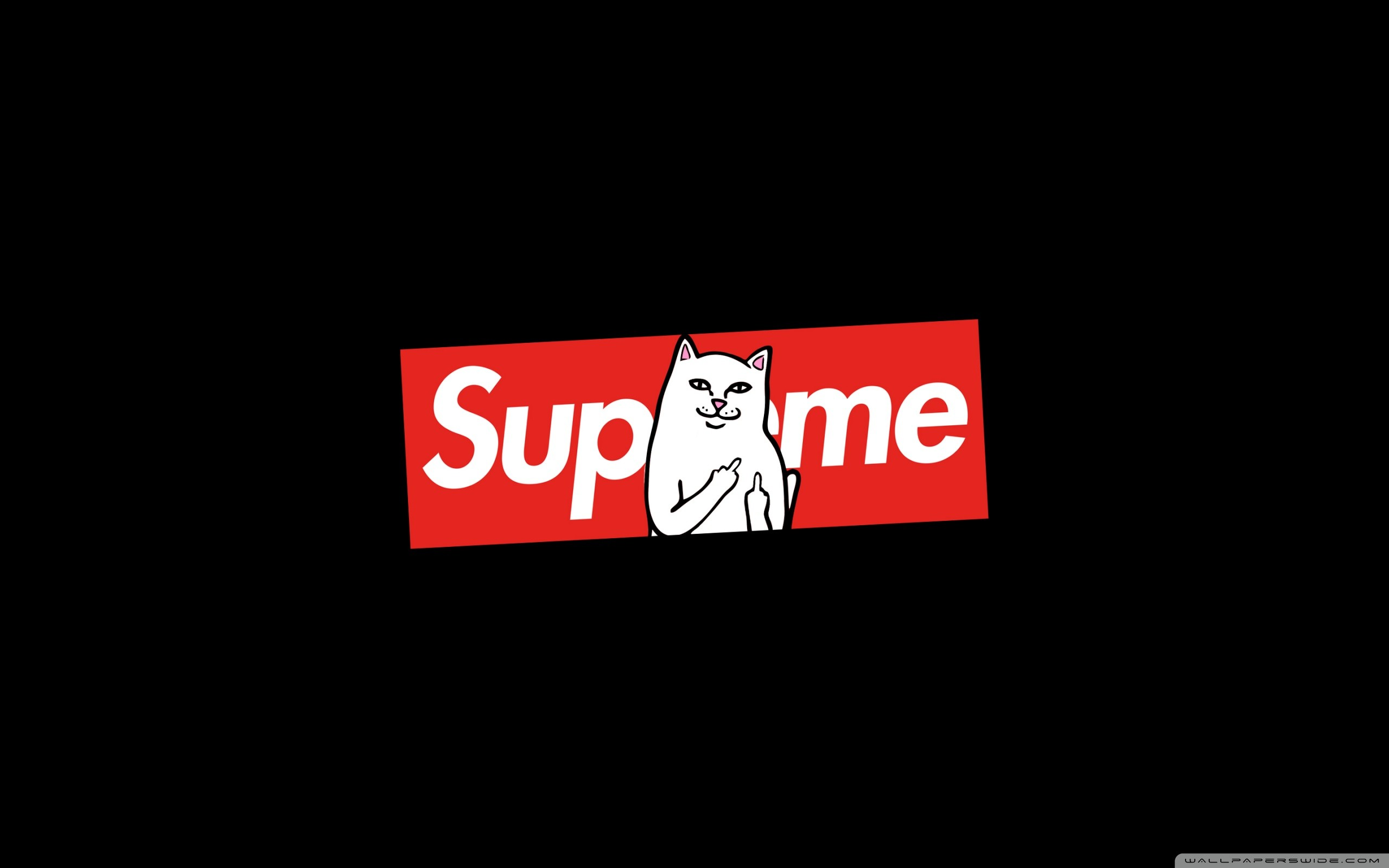 83 Supreme Wallpapers on WallpaperPlay 2560x1600