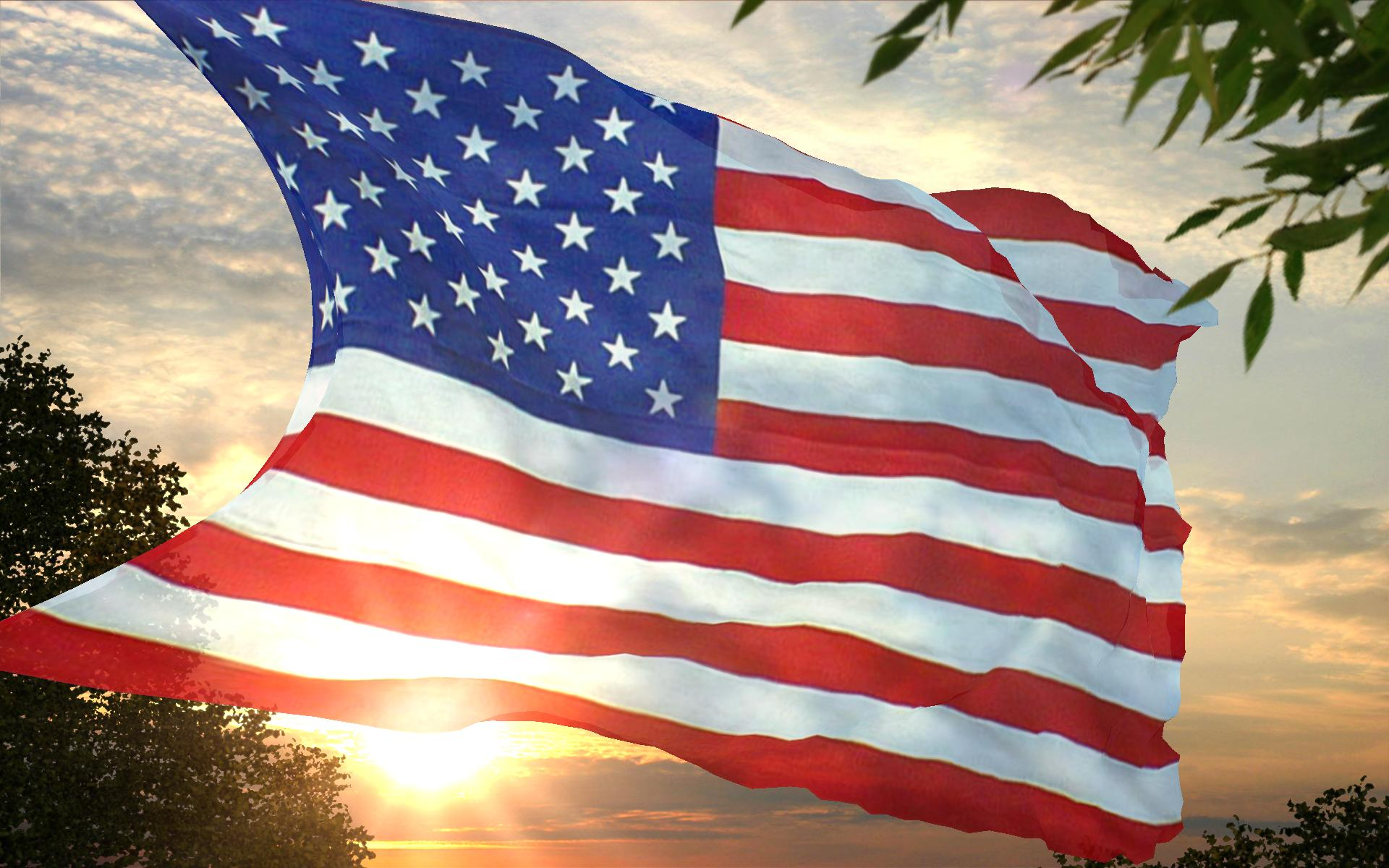 USA American Flag Wallpaper 13065 Wallpaper Cool Walldiskpapercom 1920x1200