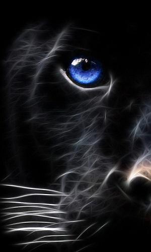 black lion wallpaper for mobile