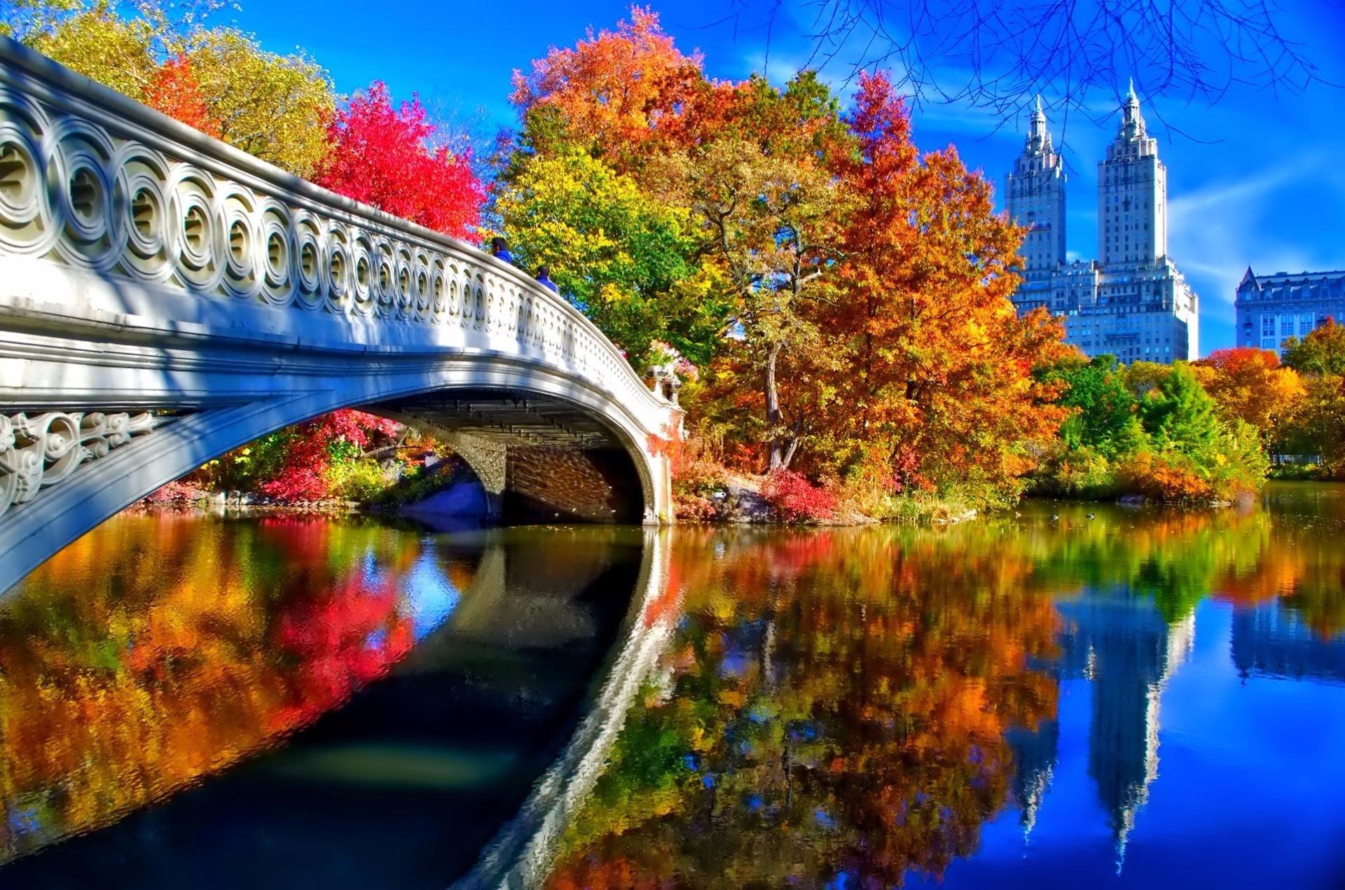 Central Park Background Download 1920x1271