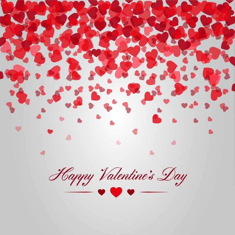 Happy Valentines Day Photography Backgrounds 6x6ft Photo 800x800