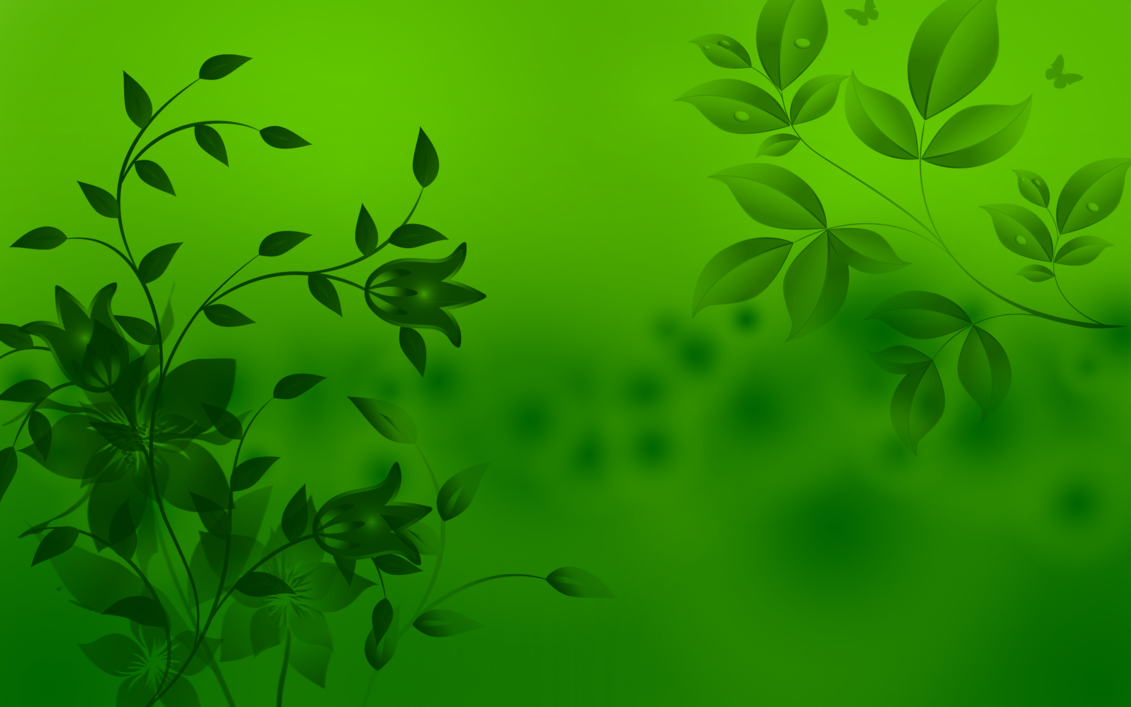 Green HD wallpapersGreen leaves HD 1080p Wallapper 1131x707
