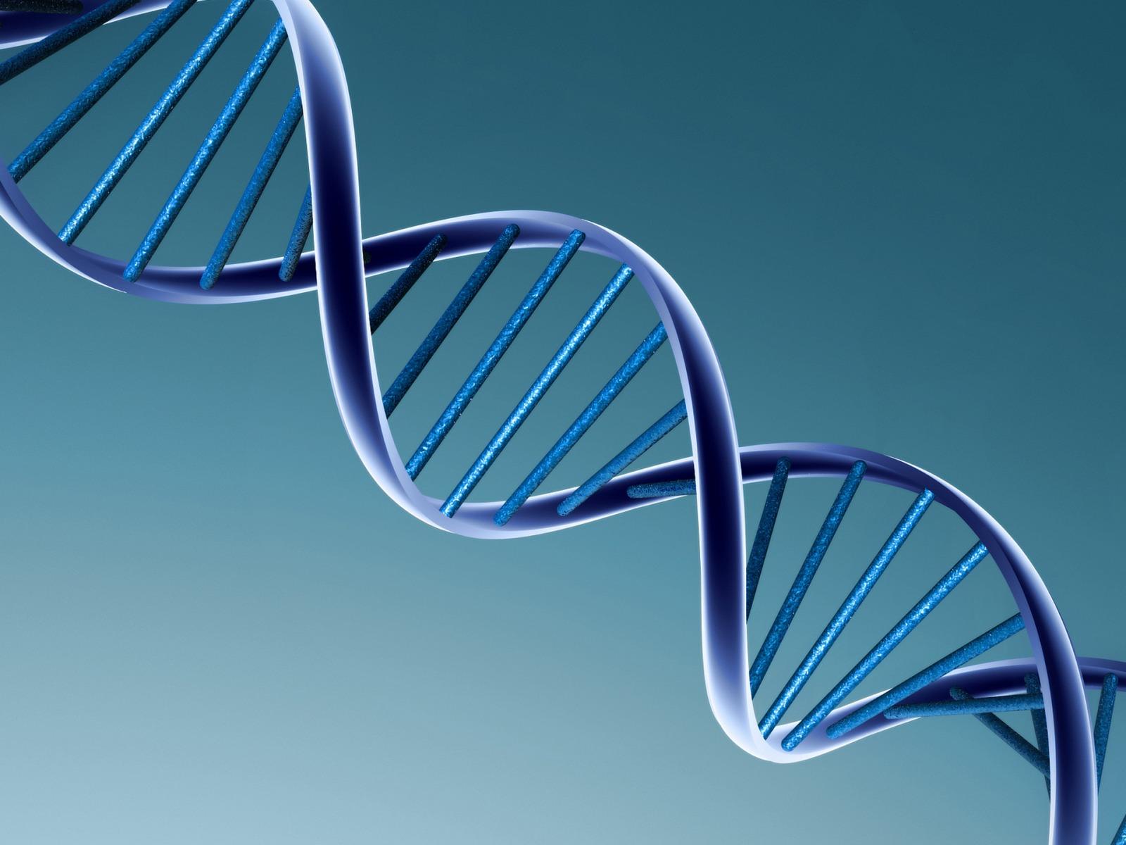 DNA Wallpaper 3D Models 3D 1600x1200