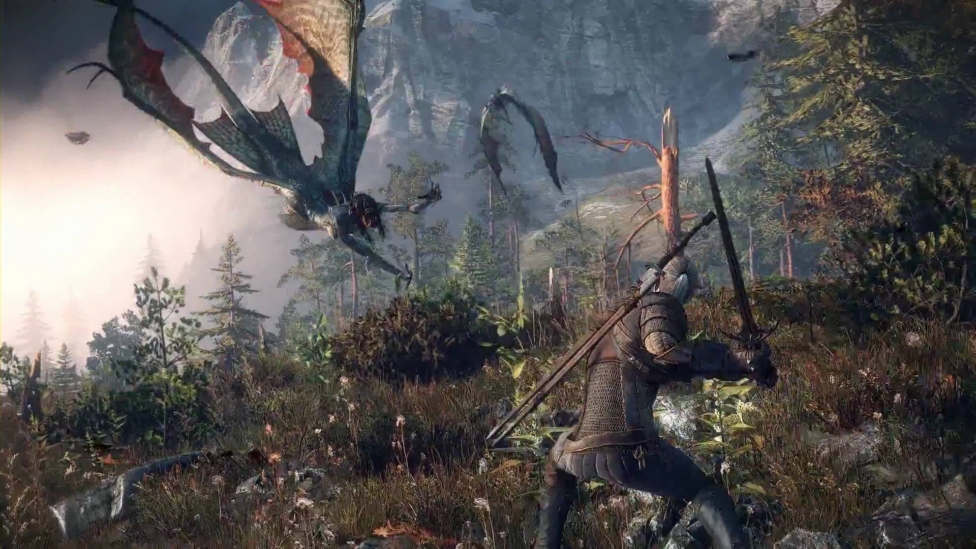 the Collection The Witcher Video Game The Witcher 3 Wild Hunt 485940 1920x1080