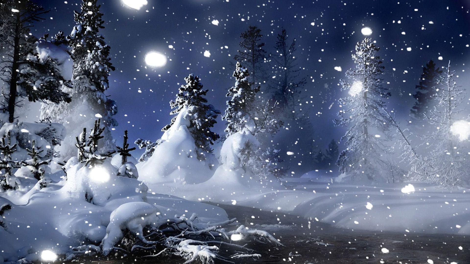 Winter Snow   Wallpaper High Definition High Quality 1920x1080