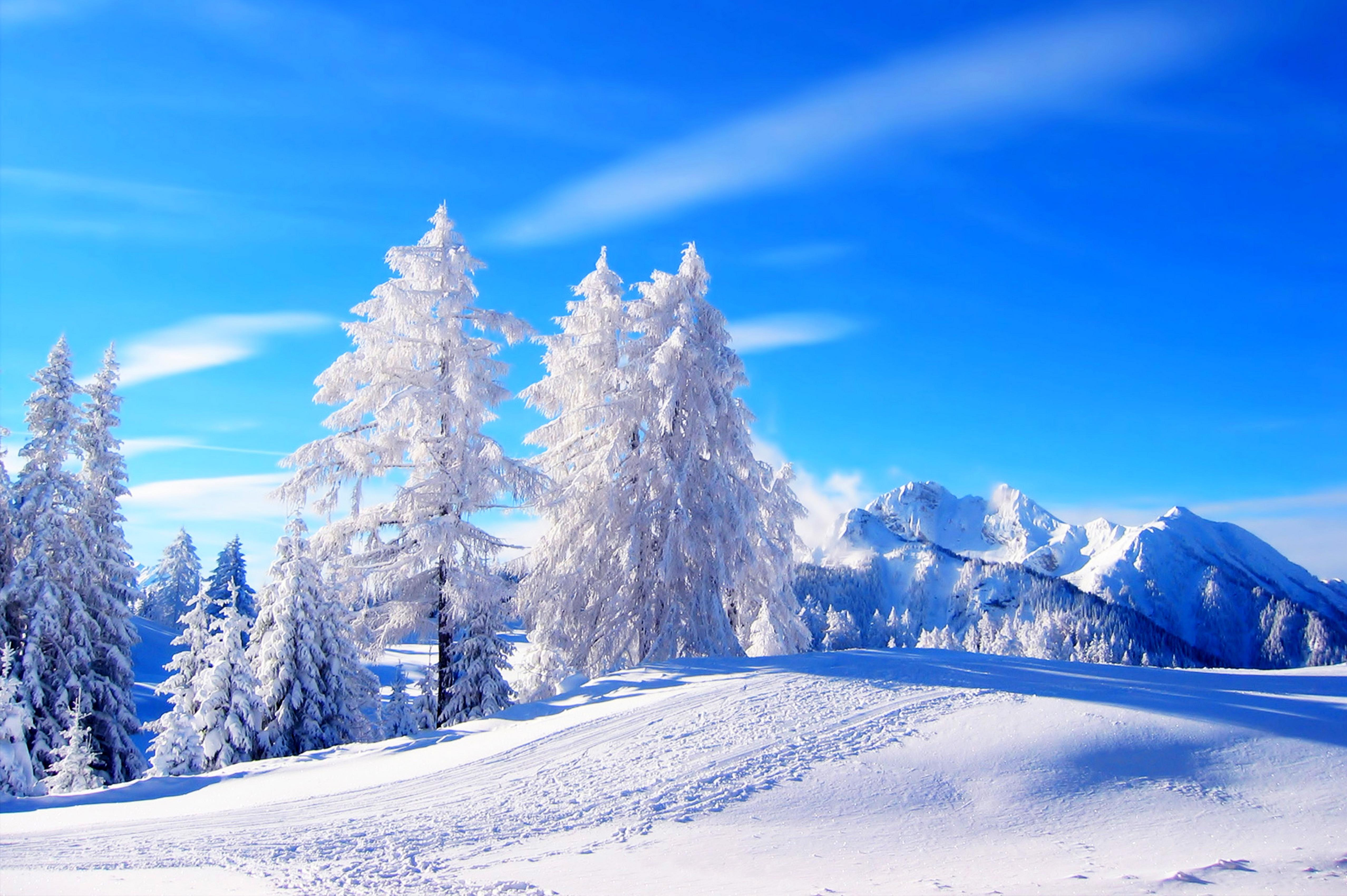 Winter Snow Backgrounds 5111x3402
