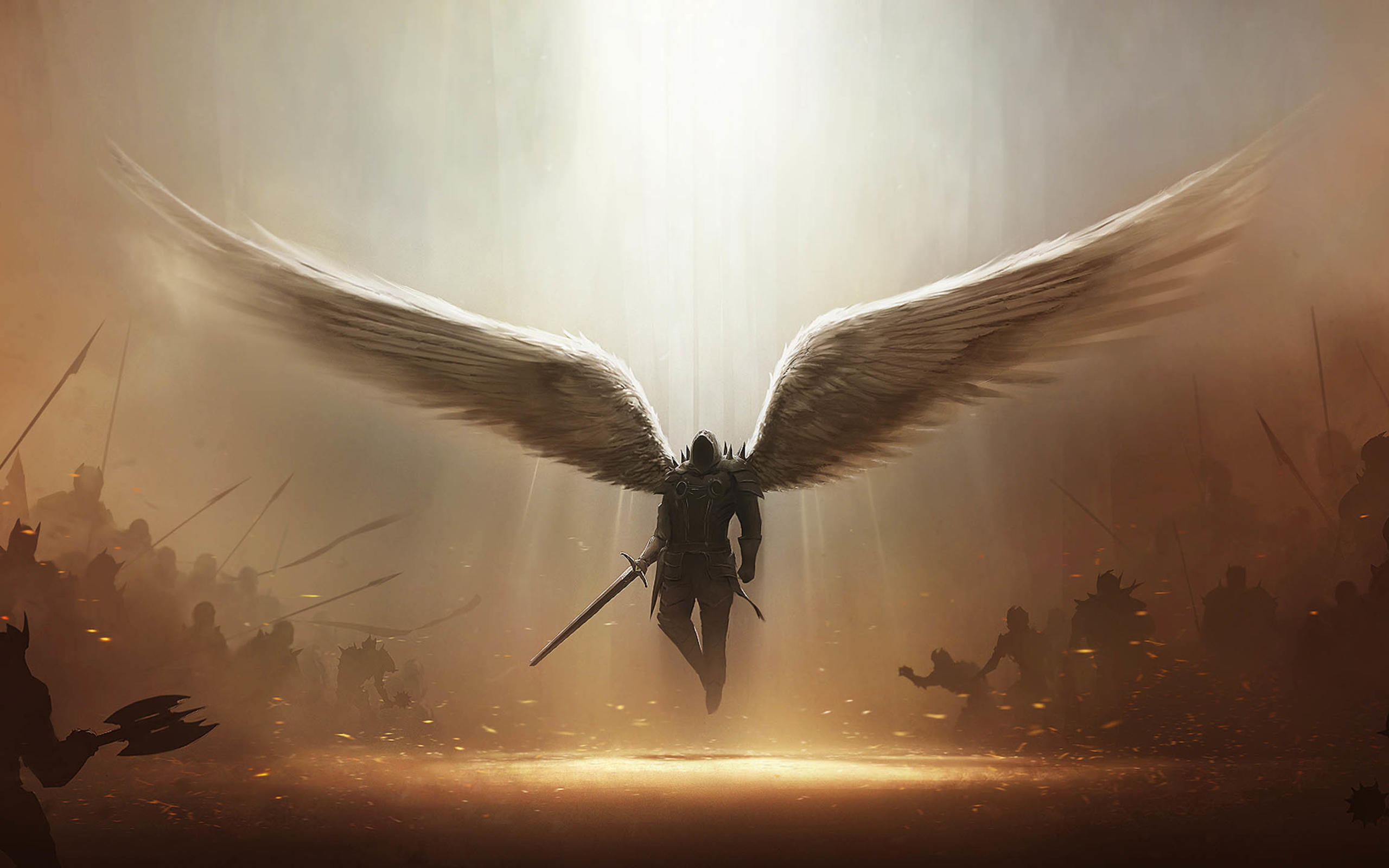 1075 Wings HD Wallpapers Background Images 2560x1600