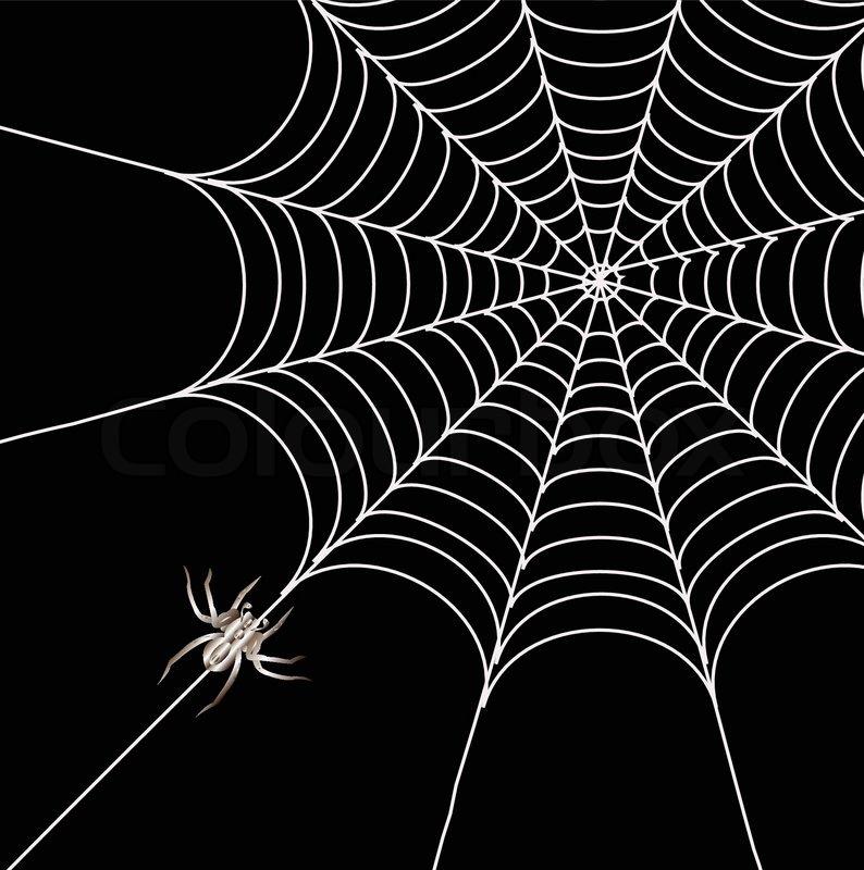 Stock Vektor von Spinnen und ein Web auf einem schwarzen Hintergrund 794x800