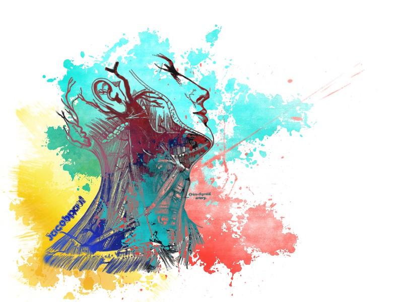 Grey S Anatomy Desktop Wallpaper Wallpapersafari