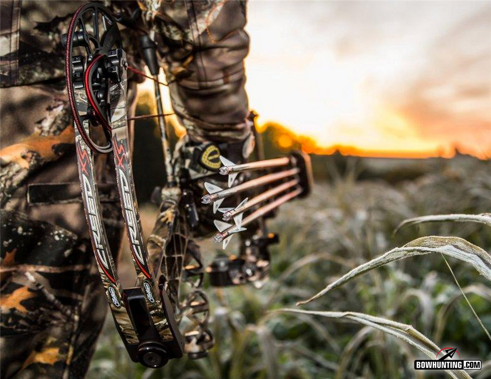 Free Download Home Forum Bowhunt Or Die 996x768 For Your Desktop Mobile Tablet Explore 46 Bow Hunting Wallpaper Desktop Archery Desktop Wallpaper Hunting Screensavers And Wallpaper Free Hunting Wallpaper Backgrounds