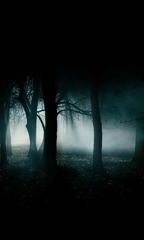 Download Dark Wallpapers for your Android phone 480x800