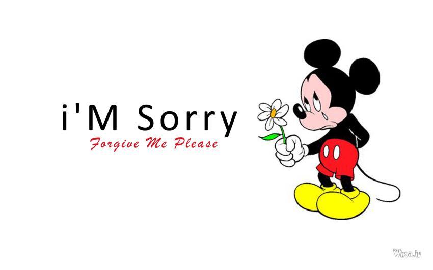I'm Sorry Wallpaper - WallpaperSafari