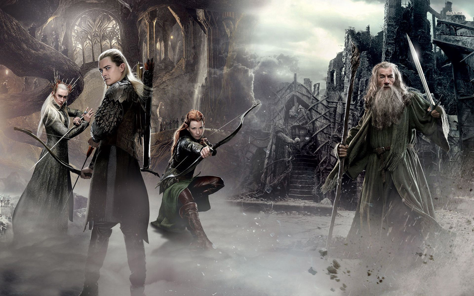 The Hobbit   The Desolation of Smaug wallpaper   Movie wallpapers 1920x1200
