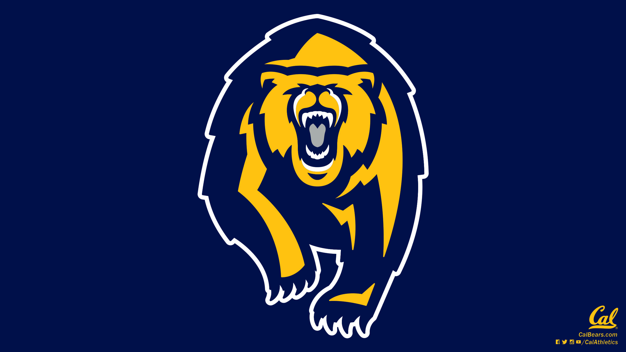California Golden Bears   Wallpapers   University of California 2560x1440